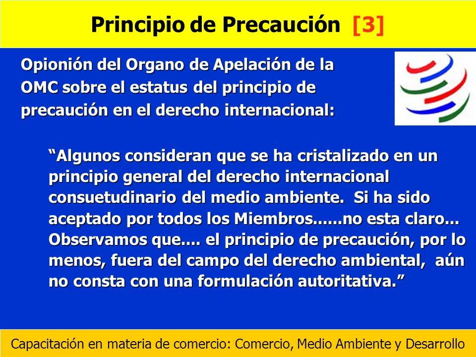 Principio de Precaución [3]